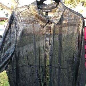 Sheer Blouse with Shimmer